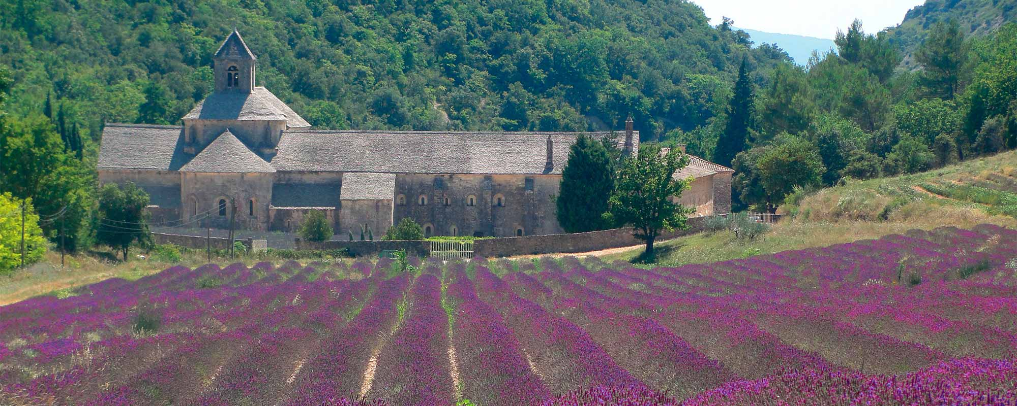 Provence – Camargue